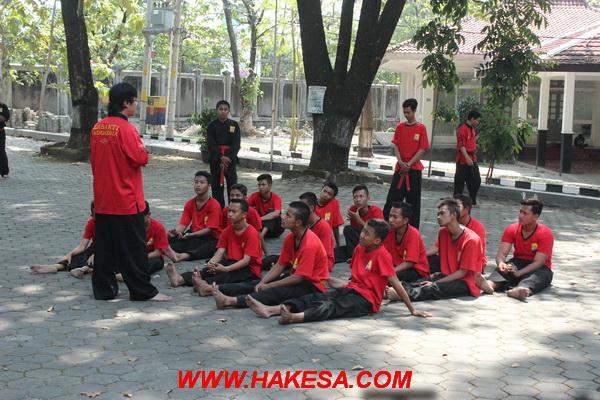 HAKESA Perguruan Tenaga Dalam Terbaik di Maluku Tengah