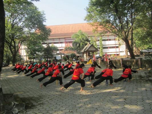 HAKESA Perguruan Tenaga Dalam Terbaik di Minahasa Tenggara