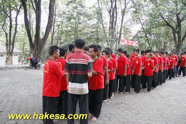 Olahraga Senam Pernafasan Kesehatan Hakesa Di Tenggilis Mejoyo Surabaya